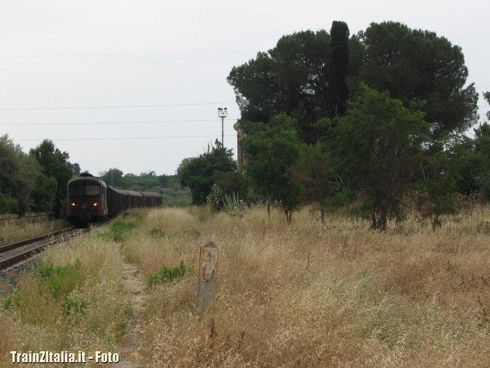 Tren-Pater_011.thumb.jpg.23acfea3a5f6d20018fb52fee3c0c93d.jpg