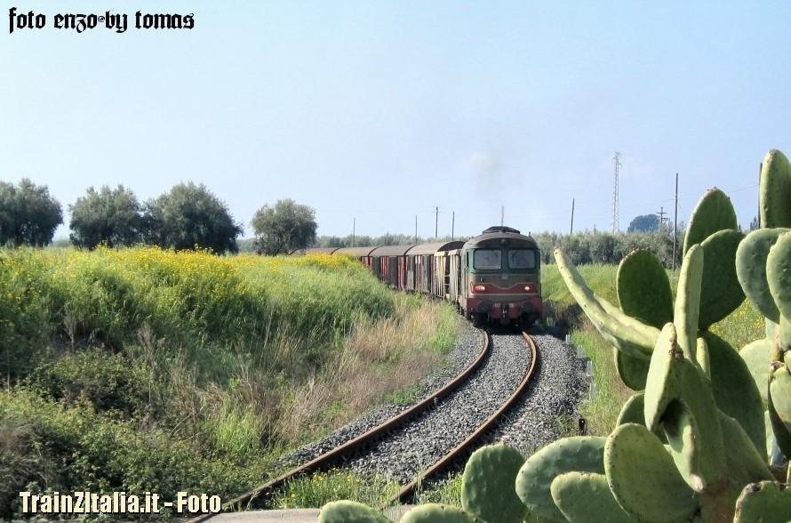 Tren-Pater_012.jpg.37a667a508e1f4aef7844aded70158d8.jpg